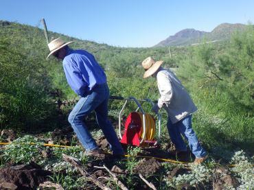 Spraying buffelgrass with herbicide. Photo: ASDM/Julia Rowe