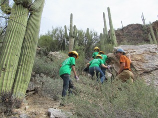 No climb is too steep for these interns! Photo: ASDM