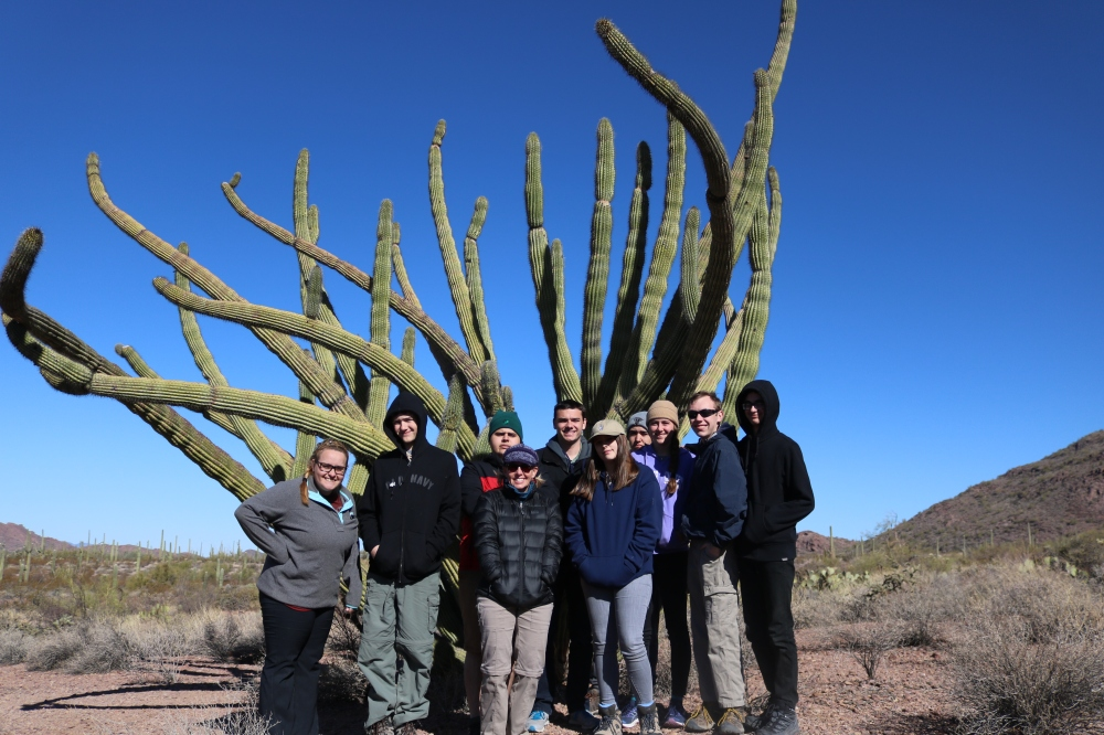 52 group at crested organ pipe