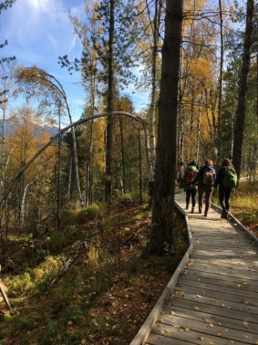 mtns trail.jpg