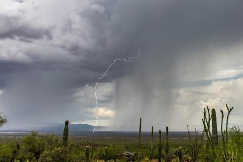 August_Storm_Liz_Kemp